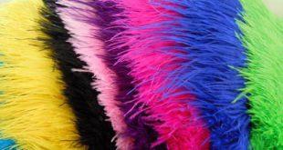 پر شتر مرغ رنگی