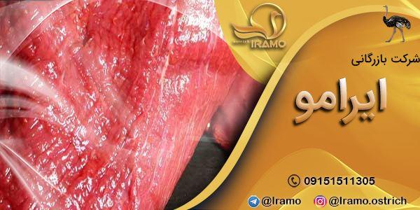 فروش گوشت شترمرغ در مشهد