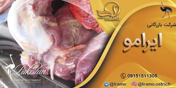 عرضه مستقیم گوشت شترمرغ کشتار روز