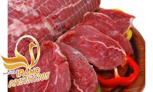 قیمت فروش گوشت شترمرغ