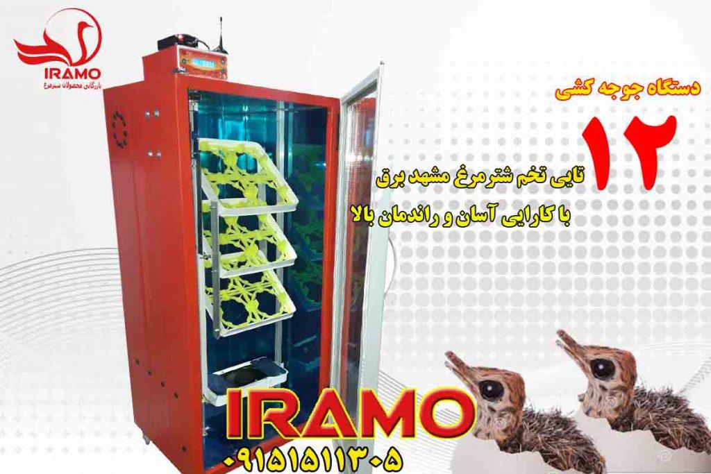 دستگاه جوجه کشی 12 تایی شترمرغ
